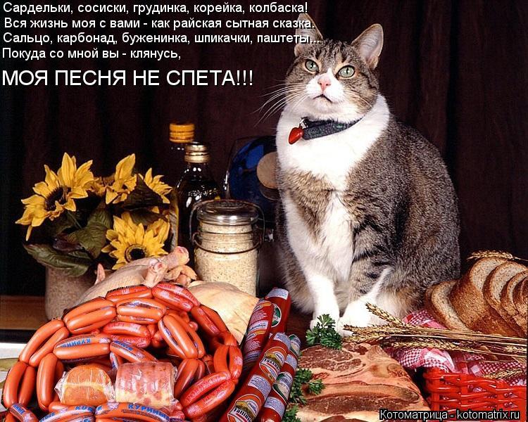 любимому зайке ест колбасу-смешные картинки каддафи ждет
