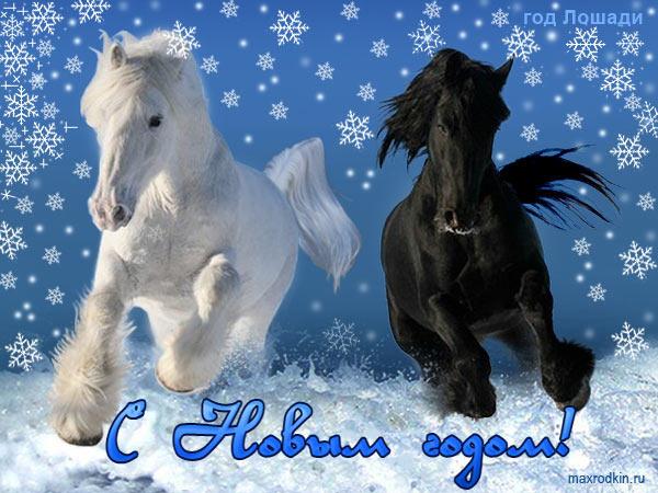 Открытки поздравления с лошадьми