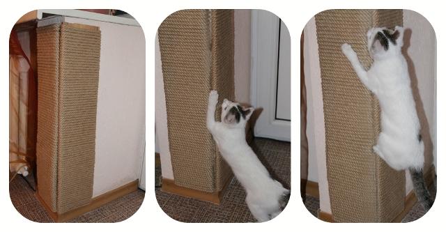 Как сделать когтеточку высокую для кошки 17