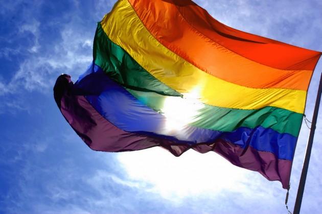 флаг лесбиянок фото