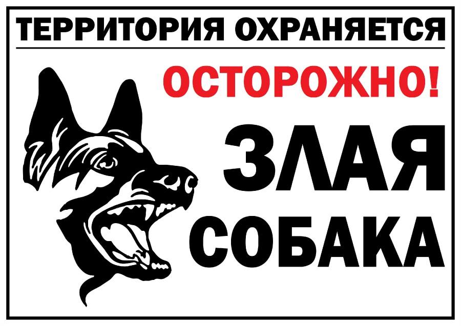 Картинка с надписью осторожно злая собака