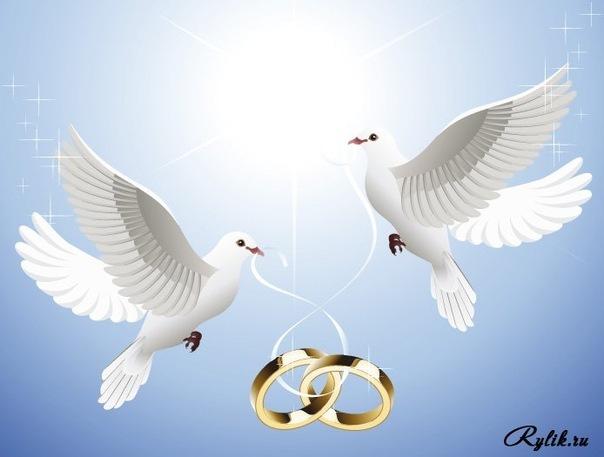 Картинки про, открытка голуби и кольца