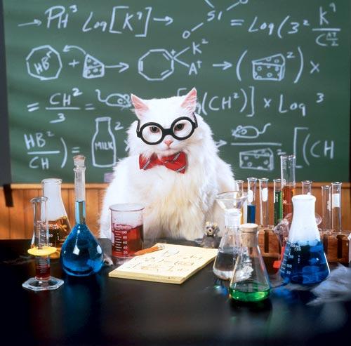 Химия поздравление с днем рождения