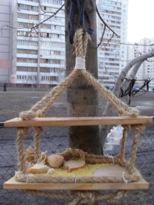 взвешивание птиц в организации. смотрите еще оседлые птицы челябинска, сделать кормушку для птиц и самая большая...