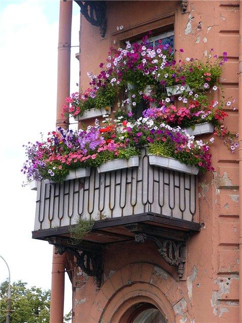 Балкон в цветах - Чебоксары.