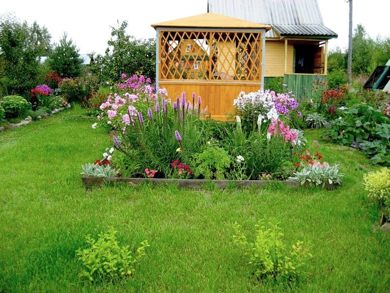 чем дачные сады цветники фото любителей зона, чистейший воздух