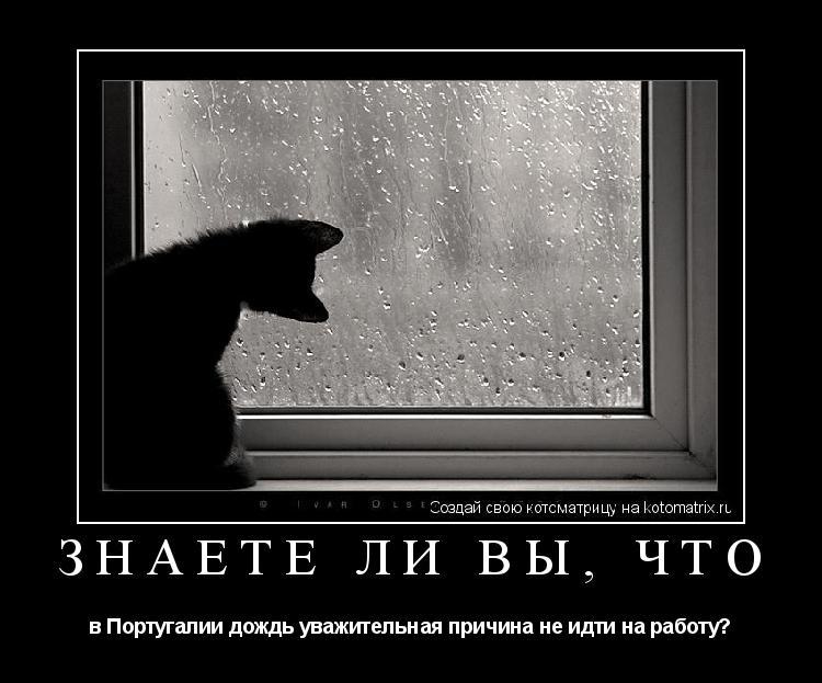 Под дождем 4: предпросмотр