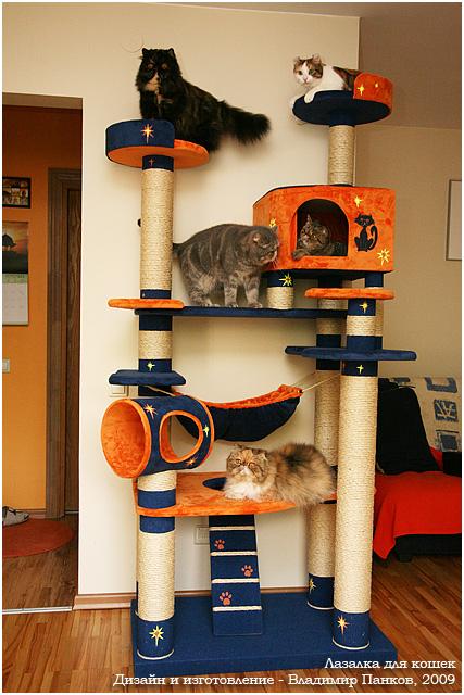 Как самому сделать для кошки домик